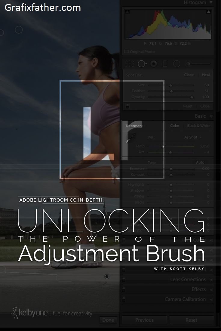 Adobe Lightroom Classic In Depth Unlocking the Power of the Adjustment Brush
