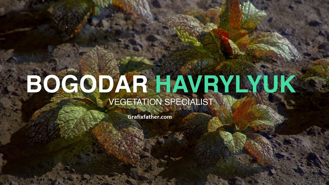 Creating Foliage in Substance Designer Bogodar Havrylyuk